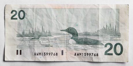 Peter Andrew Lusztyk, Twenty Dollar Bill (Canada)