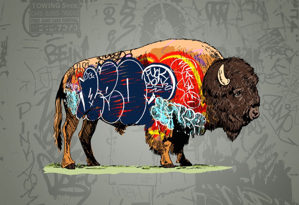 Whatisadam, Buffalo Graffiti I